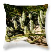 Flowers In The Sunshine Throw Pillow