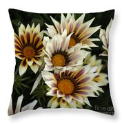 Flowers Of New Zealand 2 Throw Pillow