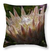 Flowers Of New Zealand 3 Throw Pillow