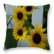 Flowers On A Fence Throw Pillow