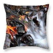 Flowing Color Throw Pillow