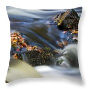 Flowing River IIi Throw Pillow