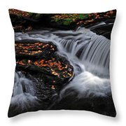 Flowing Through Fall Color Throw Pillow