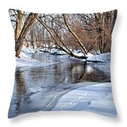 Flowing Water In The Winter Throw Pillow