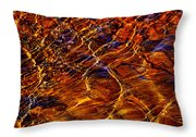 Flowing Water Of The Elwha Throw Pillow