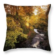 Flowing Water Through A Forest Throw Pillow