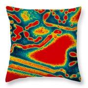 Flu Virus Throw Pillow