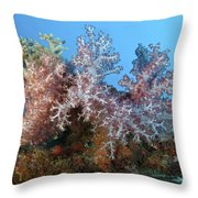 Fluffy Brown, Pink And Red Throw Pillow