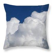 Fluffy Goodness Throw Pillow