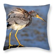 Fluffy Tri Colored Heron Throw Pillow