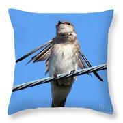 Fluttering Swallow Throw Pillow
