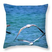 Fly Away Home Throw Pillow