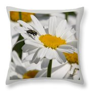 Fly In The Flower Throw Pillow