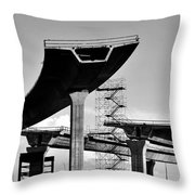 Fly Over Throw Pillow