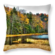 Fly Pond On Rondaxe Road II Throw Pillow