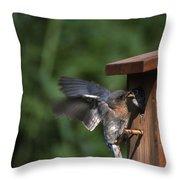 Fly Through Throw Pillow
