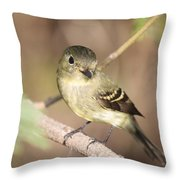 Flycatcher On A Branch Throw Pillow