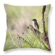 Flycatcher On A Twig Throw Pillow