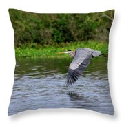 Flying Across The St Johns Throw Pillow