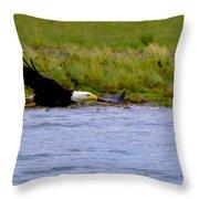 Flying Bald Eagle Throw Pillow
