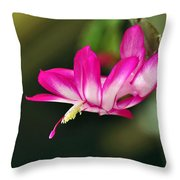 Flying Cactus Flower Throw Pillow