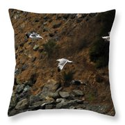 Flying For Dummies Throw Pillow