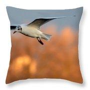 Flying Gull Throw Pillow