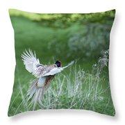 Flying Pheasant Throw Pillow