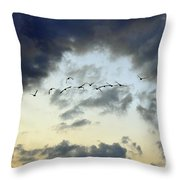 Flying South For The Winter Throw Pillow