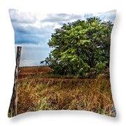 Fm 162  II Throw Pillow