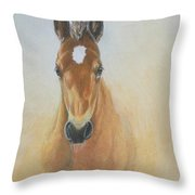 Foal Study Throw Pillow