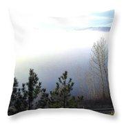 Fog On Wood Lake Throw Pillow