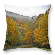 Foggy Autumn Day Throw Pillow