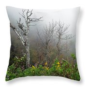 Foggy Day On The Blueridge Throw Pillow