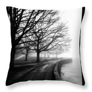 Foggy Day V-5 Throw Pillow