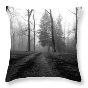 Foggy Lane By The Lake Throw Pillow