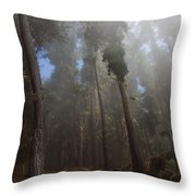 Foggy Poli Poli Throw Pillow