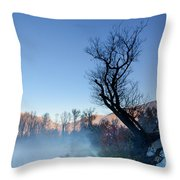 Foggy Road With A Tree Throw Pillow