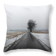 Foggy Winter Road Throw Pillow