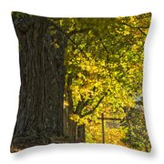 Foliage At The Cemetery Throw Pillow