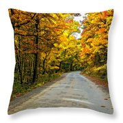 Follow The Yellow Leafed Road Painted Throw Pillow