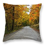 Follow The Yellow Leafed Road Throw Pillow