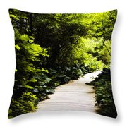 Follow Your Path Throw Pillow