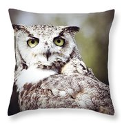 Followed Owl Throw Pillow