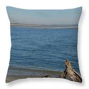 Folly And Morris Island Throw Pillow