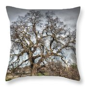 Folsom Oak Tree Throw Pillow