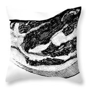 Food: Beef Throw Pillow