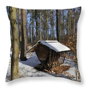 Food Point For Animals In Winterly Forest Throw Pillow by Matthias Hauser