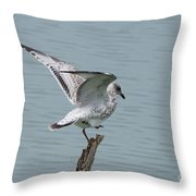Foot Up Wing Test Throw Pillow