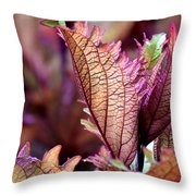 For Those Who Say There Is No God - He Is Throw Pillow
